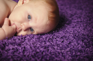 Safe and affordable carpet cleaning